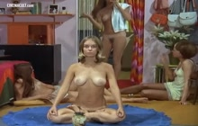 Nude scenes from The Stewardesses